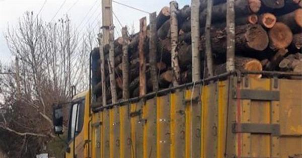 تخریب محیط زیست کردستان از سوی رژیم جمهوری اسلامی ایران کماکان ادامه دارد