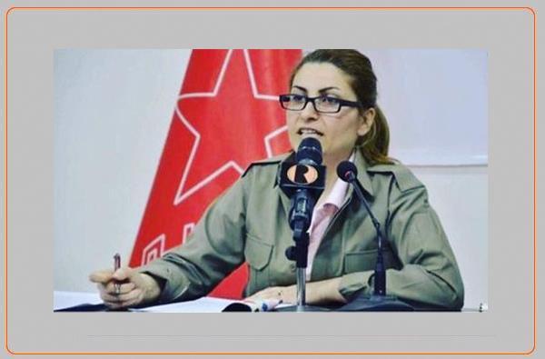 تحلیلی اجمالی از رفیق دلنیا رحیم زاده فعال سیاسی و از کادرهای کومه له در خصوص ٢٥ نوامبر