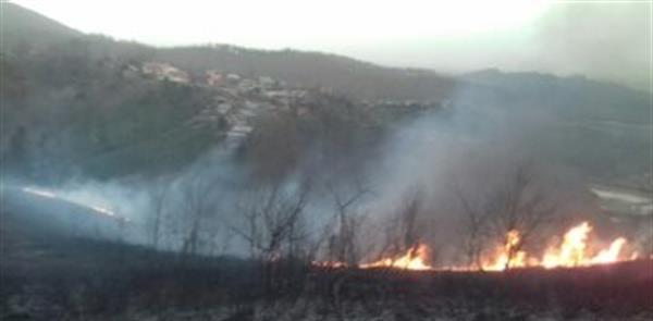 در جریان آتش سوزی های اخیر در مراتع و جنگل های روانسر سه شهروند مدنی دچار سوختگی شدید شدند