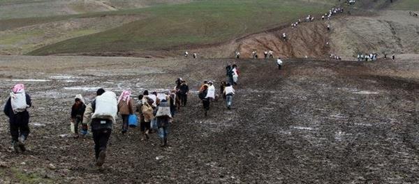 اشنویه/ زخمی شدن دو کولبر در مرز کیله شین